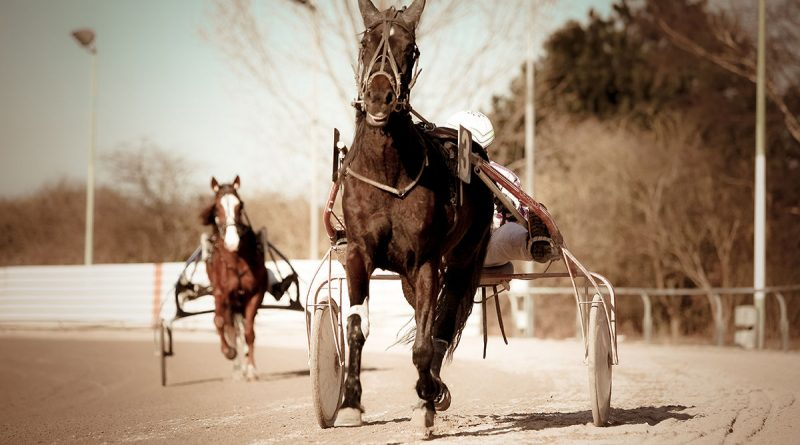 Sport e scommesse: metodi tradizionali e innovazioni